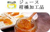 ジュース 柑橘加工品