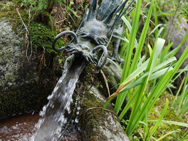 龍王神社の泉