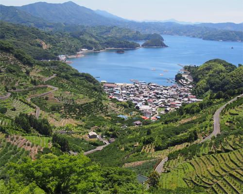 大阪府での地震の影響について