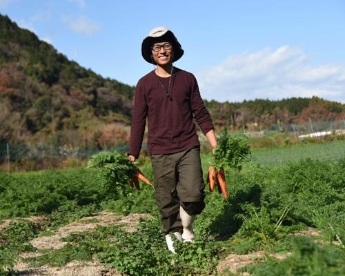 てんぽ印の夏野菜